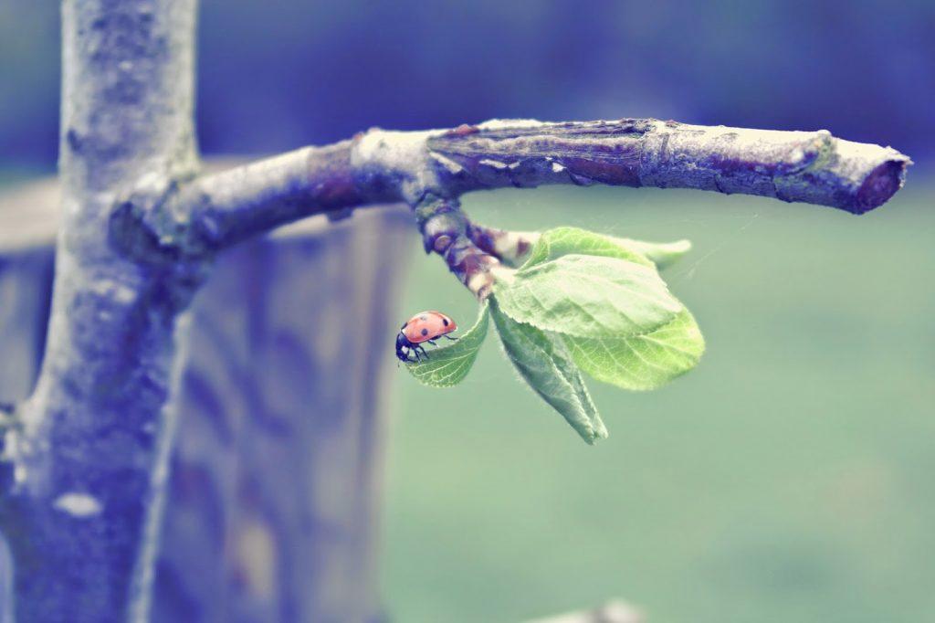 Lifestyle Photography UK